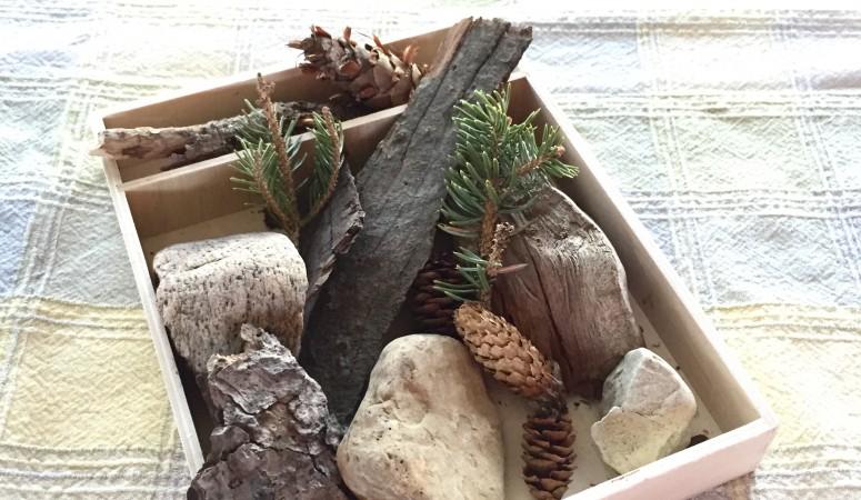 Creating a Nature Tray