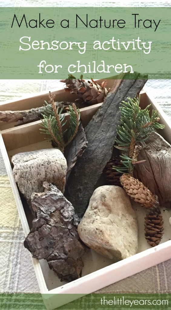 Nature Tray Pinterest Cover