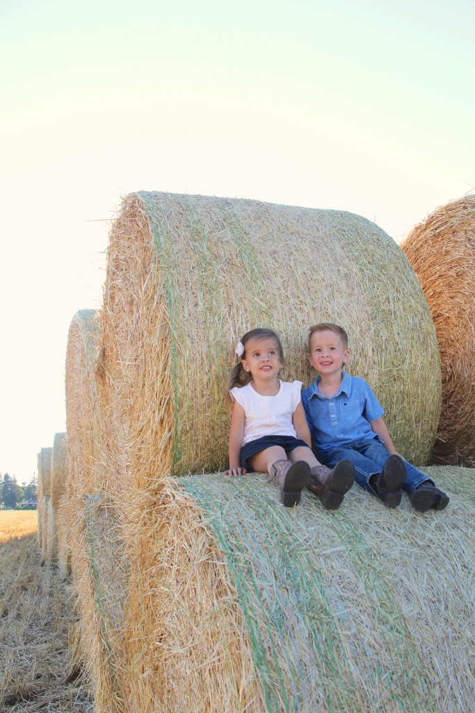 haybales country pictures