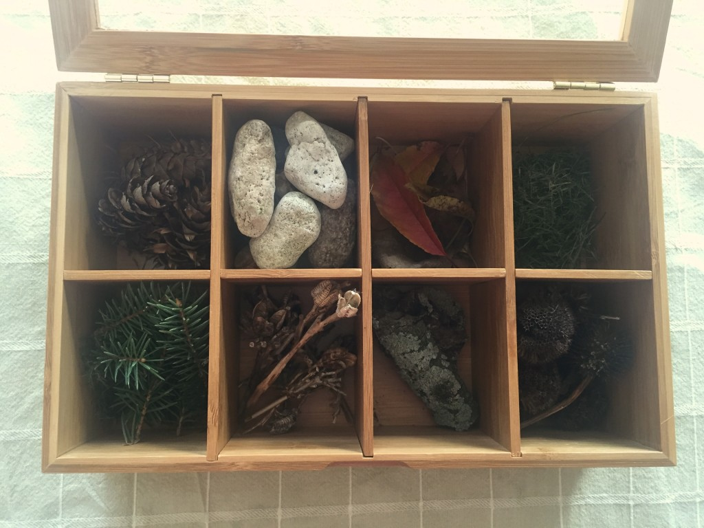 nature tray for kids